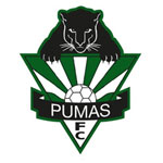 Hills Pumas Football Club